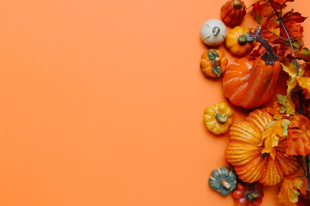 Pumpkins and autumn leaves with copy space in the left