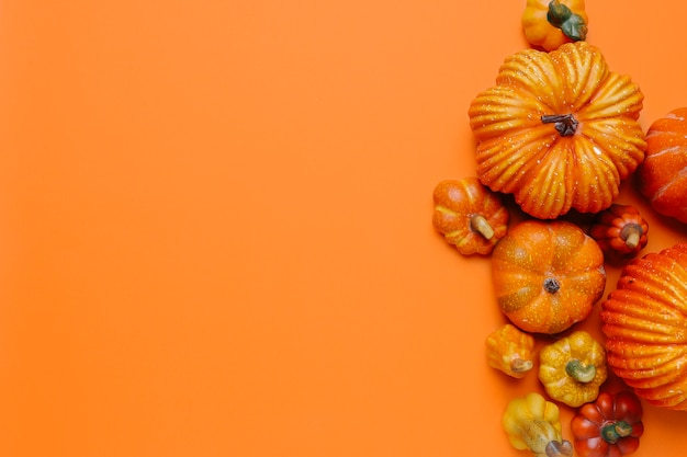 Pumpkins for autumn