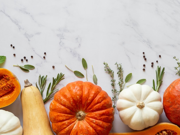 Pumpkins border of various sizes and colors and different raw herbs and spices on marble background