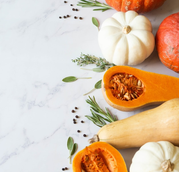Pumpkins border of various sizes and colors and different raw herbs and spices on a marble background.