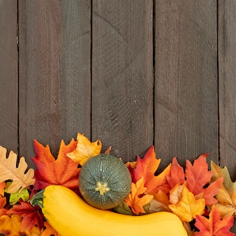 Pumpkins on colourful leaves with copy space