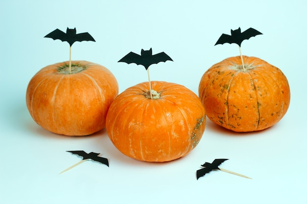 Pumpkins decorated with paper cut bats on a white background