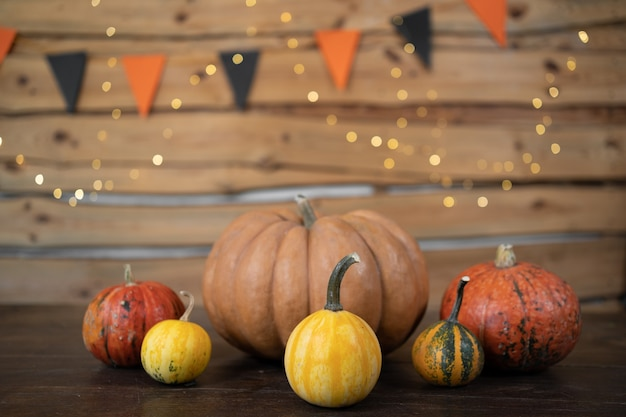 Pumpkins of different sizes and colors stand on a wooden table. festive halloween background.
