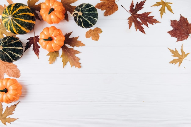 Pumpkins, dried leaves on a white wooden. autumn, fall, halloween concept