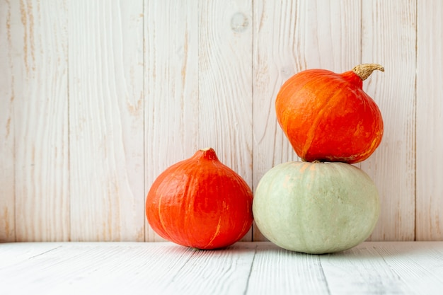 Pumpkins in front of white wooden wall