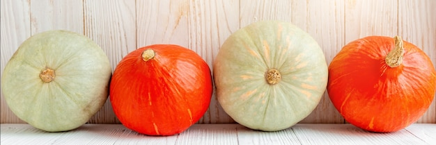 Pumpkins in front of wooden wall rustic country style natural organic vegetables food autumn harvest copy space