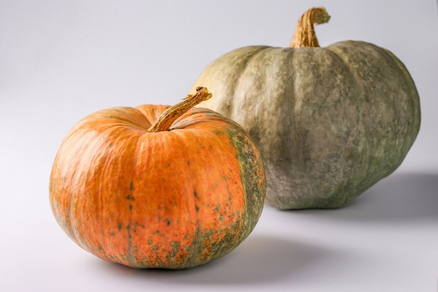 Pumpkins of green and orange on a white background with a shadow, autumn still life, halloween minimal concept, horizontal orientation, closeup
