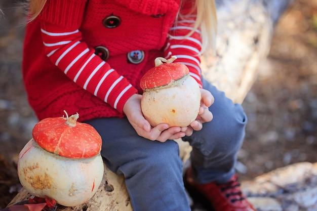 Pumpkins in the hands of a little girl.