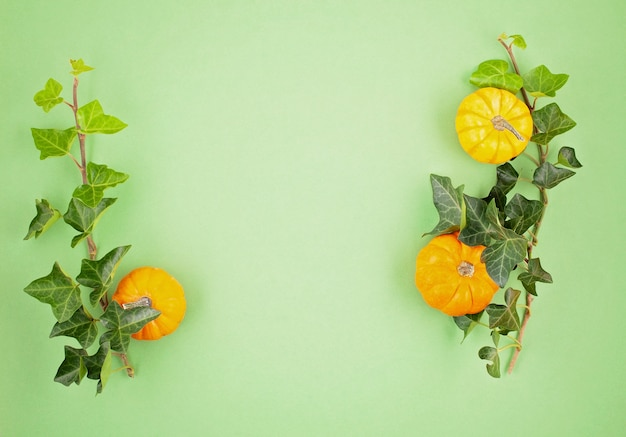 Pumpkins and leaves over pastel background