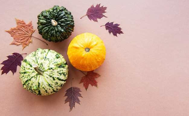Pumpkins on a light brown background