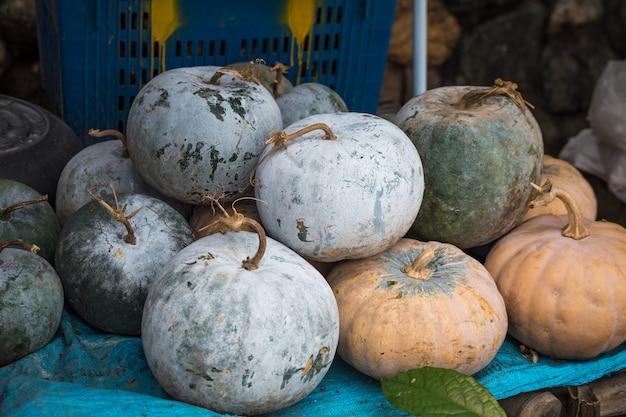 Pumpkins at the market in thailand