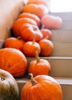 Тыквы на лестнице хэллоуин концепция
