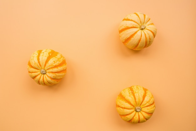 Pumpkins on pastel orange