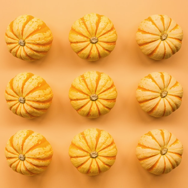 Pumpkins on pastel orange