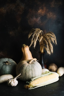 Pumpkins and squashes with copy space