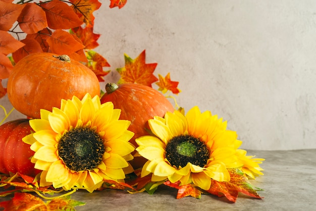 Pumpkins and sunflowers near autumn leaves