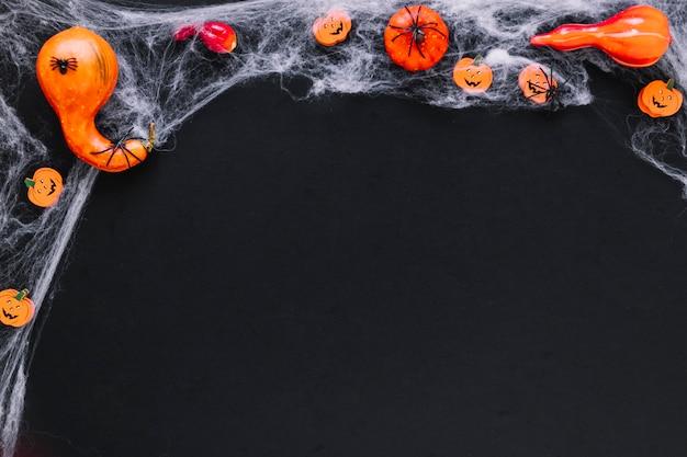 Pumpkins on web for halloween