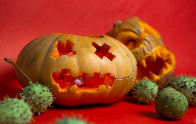 Тыквы с резными лицами на хэллоуин на красном фоне