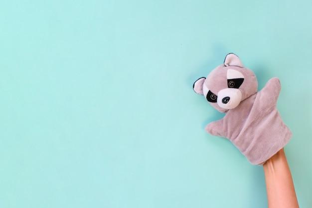 청록색 배경에 손에 인형극 장난감. 어린이 엔터테인먼트 개념. 너구리
