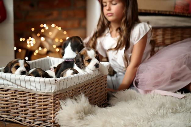 Cuccioli in un cestino