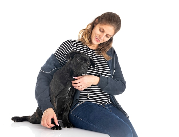 Puppy italian mastiff and woman in front of white background