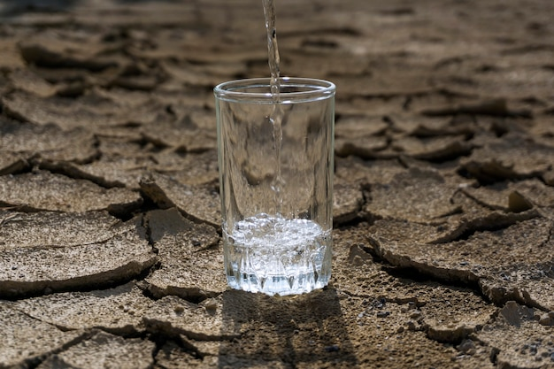 마른 금이 간 점토 한가운데 서 있는 유리 비커에 순수하고 깨끗한 물을 붓습니다.