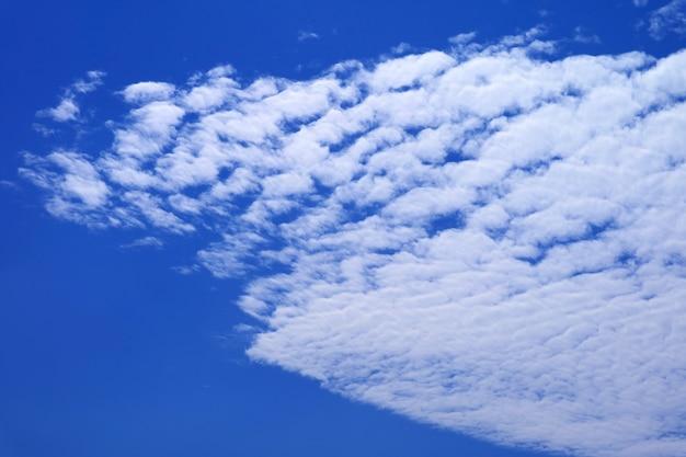 鮮やかな青い空に真っ白な高積雲