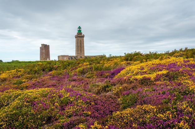 Фиолетовые и желтые цветы летом в phare du cap frehel, это морской маяк в кот-д'армор (франция). на вершине мыса фрехеля