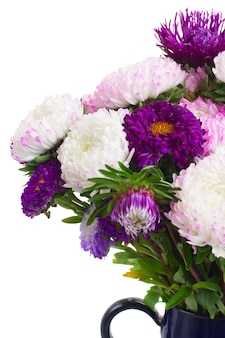 Purple aster flowers bouquet in glass  vase close up isolated on white background