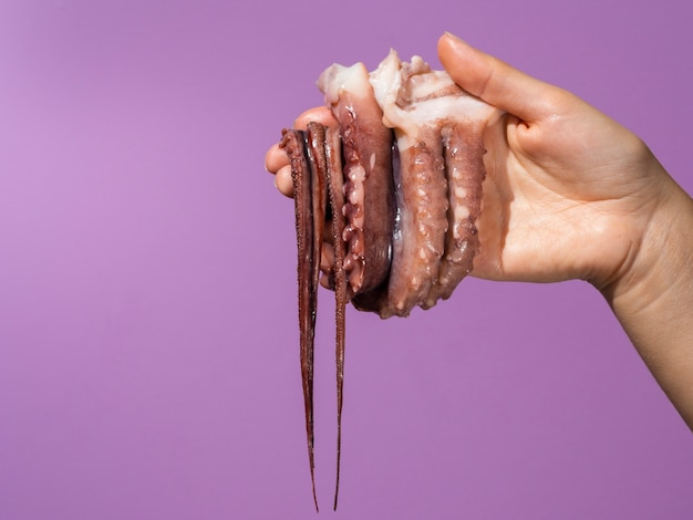 Purple background with hand holding octopus