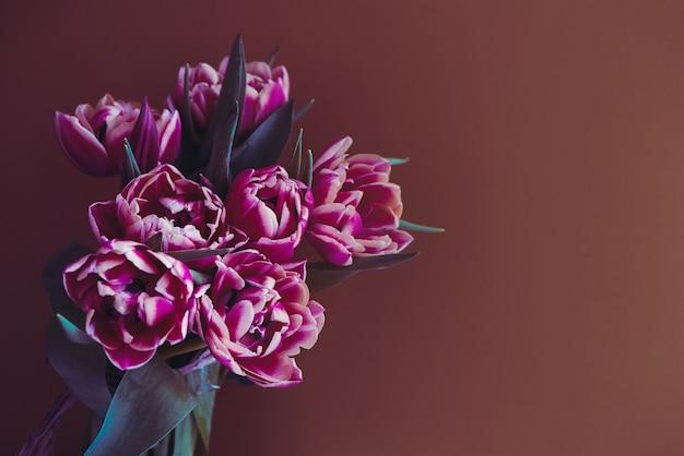 Purple beautiful tulips flowers on brown