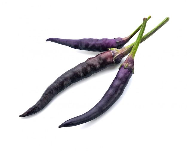 Purple chili on white.