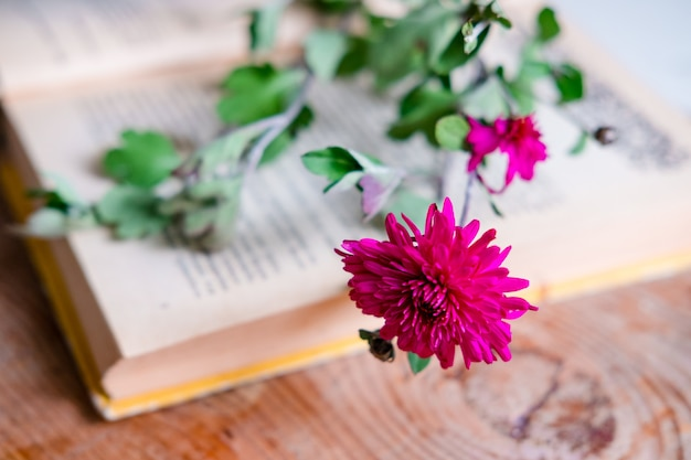 本の上の紫色の菊、木製のテーブル。花と本の美学。木製のテーブルの上の美しい花。