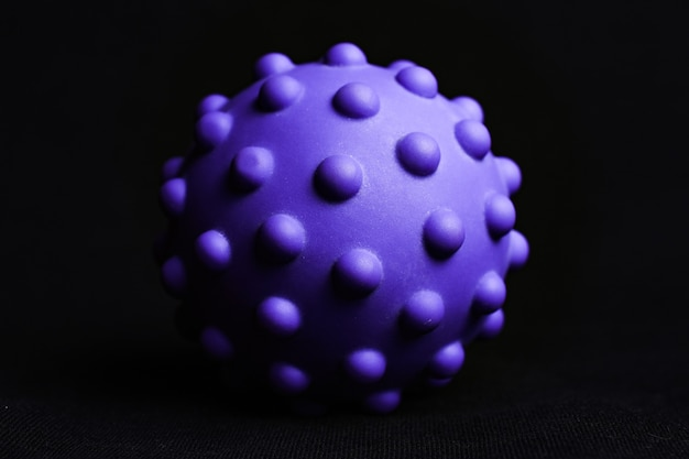 Purple colorful bright isolated spiky ball toy macro