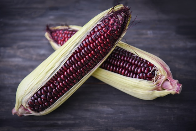 Purple corn fresh on cob on wooden dark background