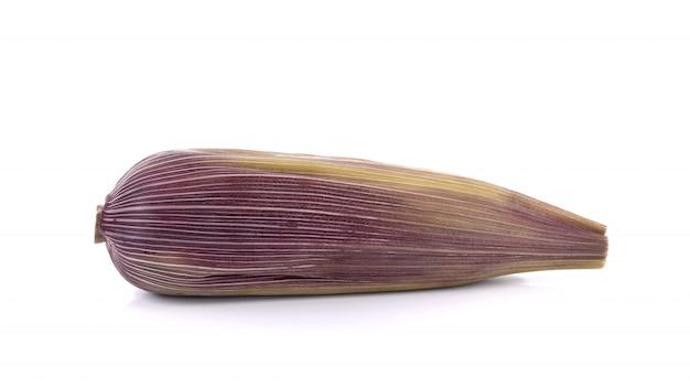 Purple corn isolated