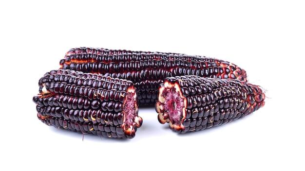 Purple corn on white