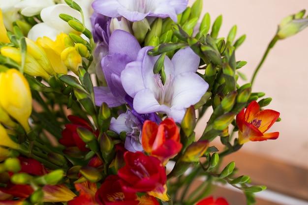 Purple daffodils background