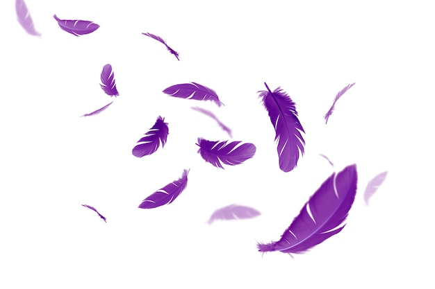 Purple feathers float in the air.