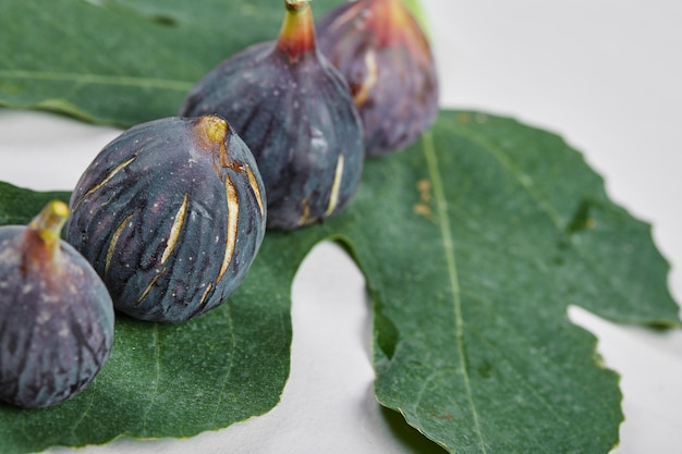 Purple figs with a leaf on white.