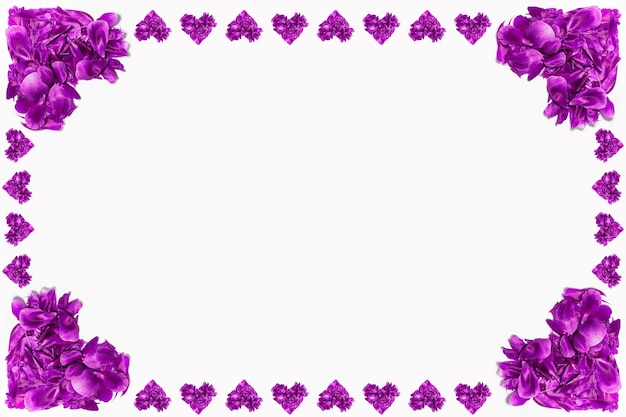 Purple flower petals in shape of hearts on white surface
