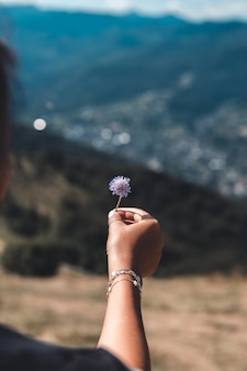 Purple flowers in hand on a background of mountains
