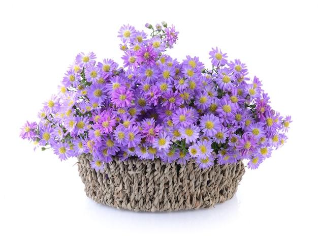 白い背景の上のバスケットの紫色の花