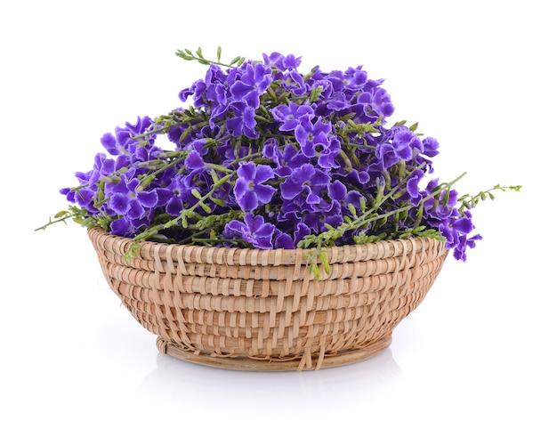 バスケットの紫色の花