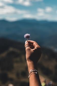 山を背景に手に紫色の花