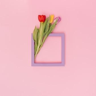 パステルカラーの背景に3つの鮮やかなチューリップと紫のフレーム。バレンタインのフラットレイコピースペース。