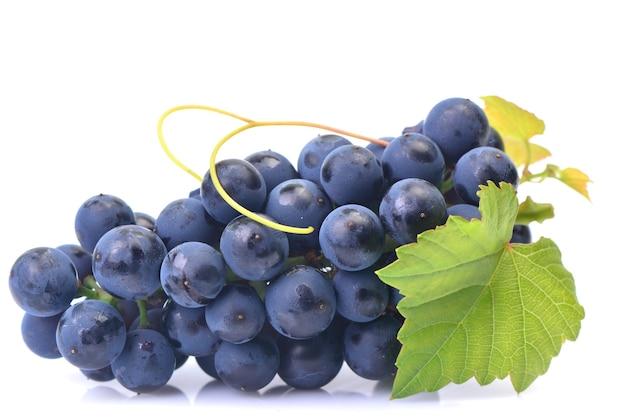 白い背景に分離された紫のブドウ