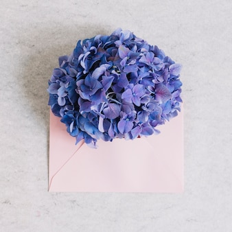Purple hydrangea flower on pink envelope against rough backdrop