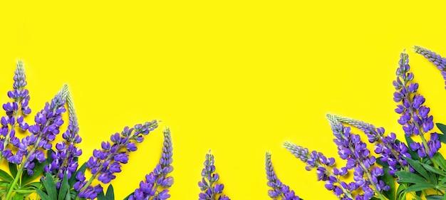 紫色のルピナスは、野生のバイオレットブルーの花の黄色の背景の構成に横たわっています
