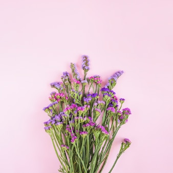 Purple and pink flower bouquet against pink backdrop